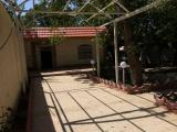 فروش باغ ویلا 1500 متری در باغستان کوشک(کد190)